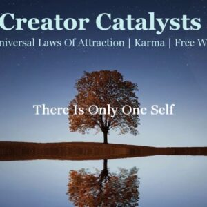 52  The Universal Laws | Laws Of Attraction | Karma | Free Will | Path Of Creator