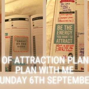 2020 Law Of Attraction Planner | PLAN WITH ME
