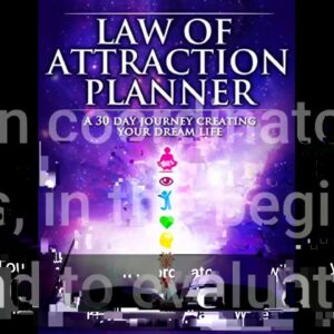 6 Easy Facts About Law of Attraction Planner – The VisionPreneur Explained