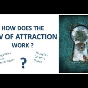 How does the Law of Attraction Work. Success Loops.