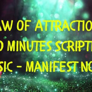 Law Of Attraction ~ 20 Minutes Scripting Music ~ Manifest NOW!