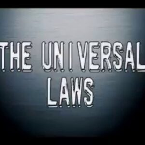 The Universal Laws by Stewart Wilde | Thoughts of Attraction