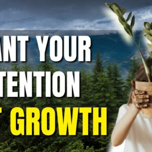 Planting Seeds of Intention - How To Manifest Fast - 100% RESULTS - With Guest Sheena Shah